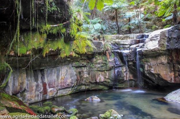 Moss Garden, Carnarvon Gorge