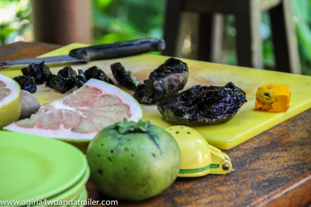 Black Sapote ripe and green, Pommelo and yellow Sapote